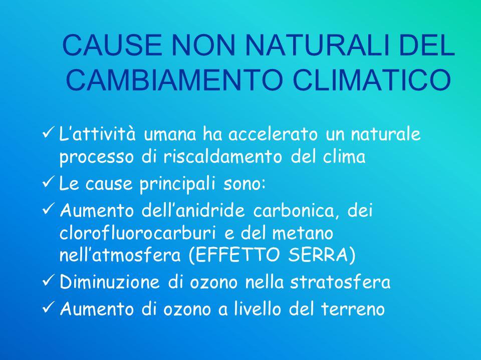 CAUSE NON NATURALI DEL CAMBIAMENTO CLIMATICO