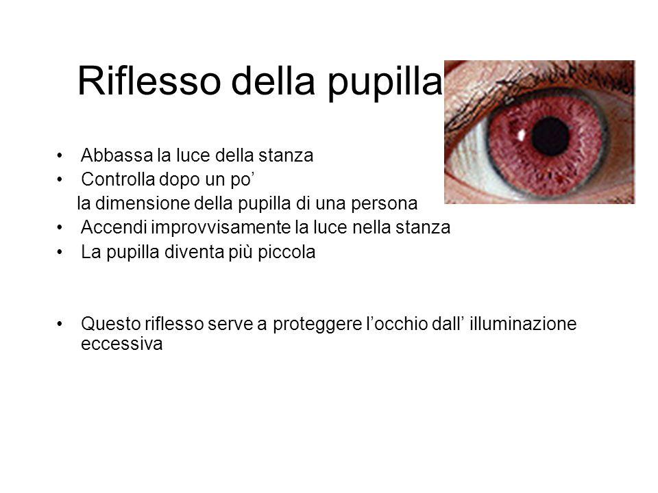 Riflesso della pupilla