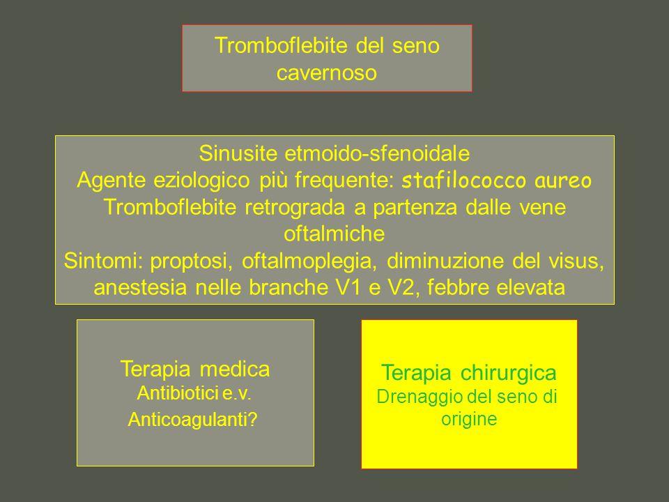 Tromboflebite del seno cavernoso