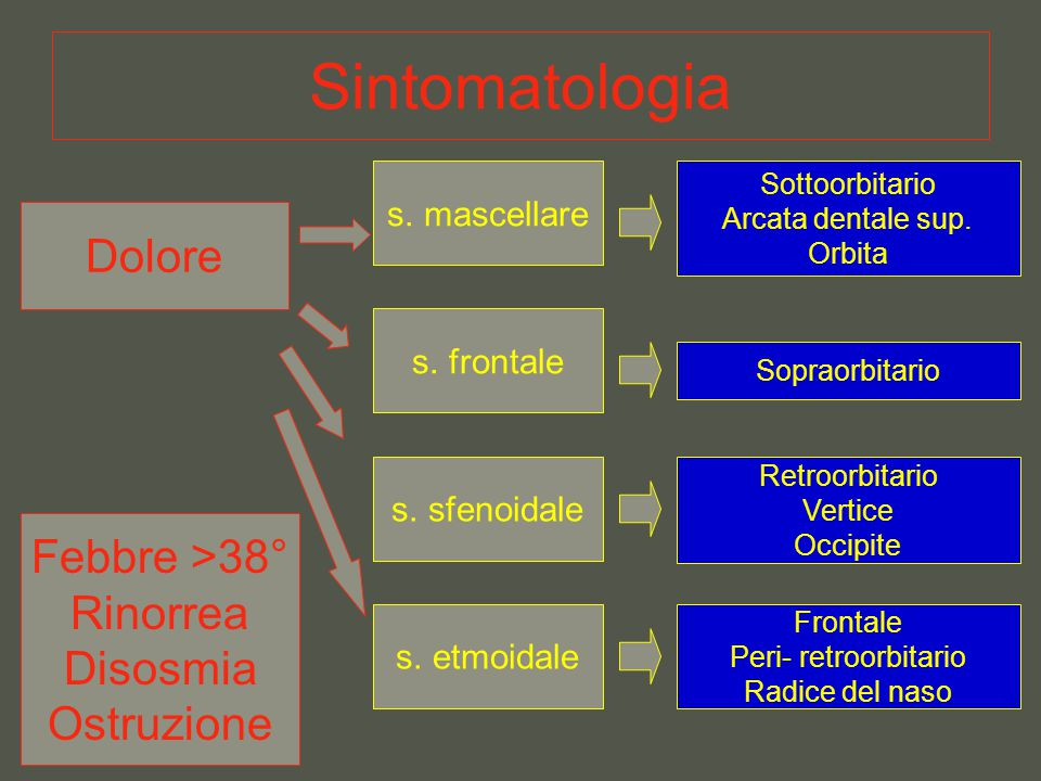 Sintomatologia Dolore Febbre >38° Rinorrea Disosmia Ostruzione