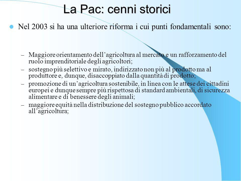 La Pac: cenni storici Nel 2003 si ha una ulteriore riforma i cui punti fondamentali sono: