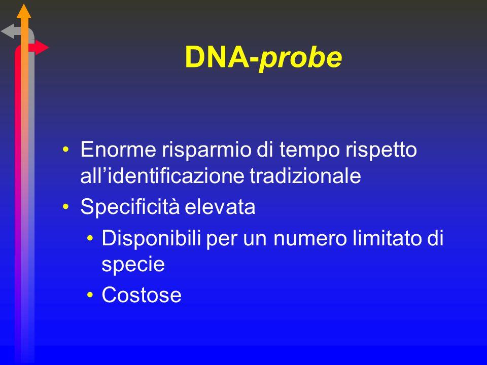 DNA-probe Enorme risparmio di tempo rispetto all'identificazione tradizionale. Specificità elevata.