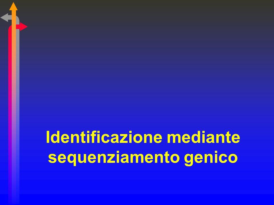 Identificazione mediante sequenziamento genico