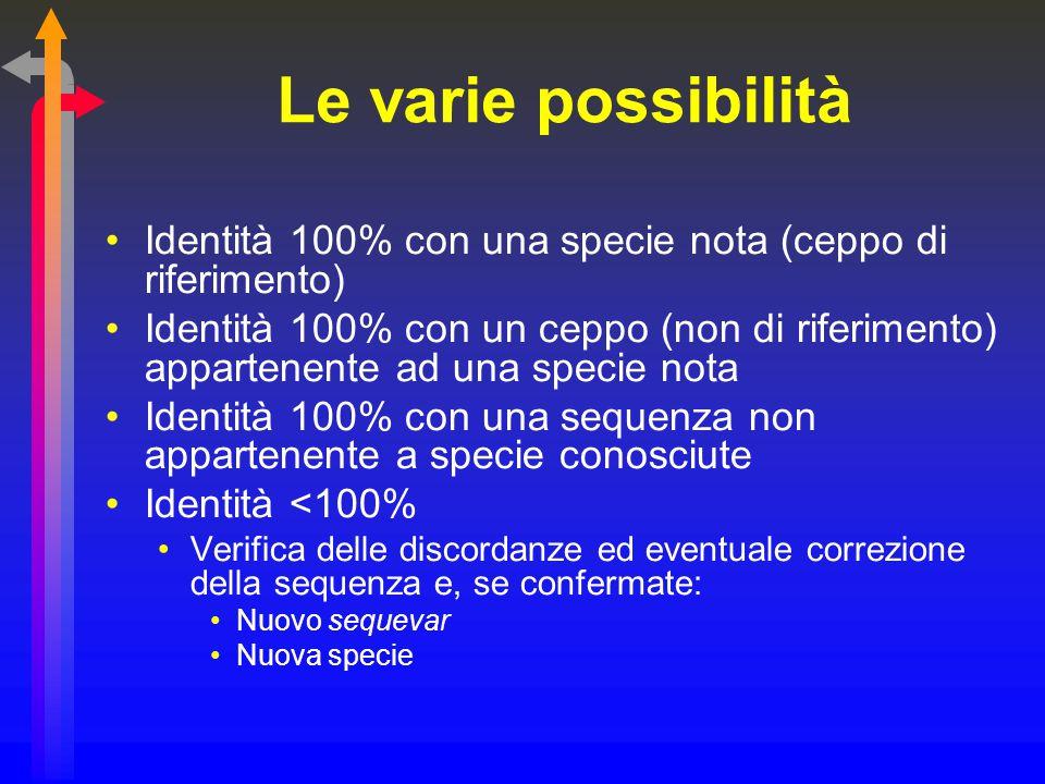 Le varie possibilità Identità 100% con una specie nota (ceppo di riferimento)