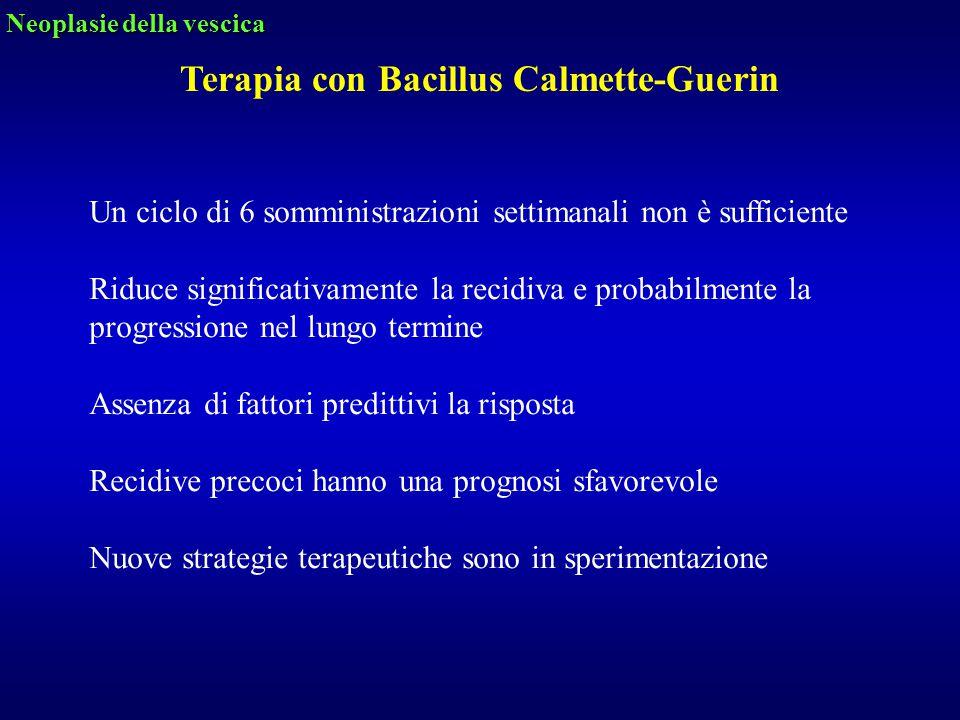 Terapia con Bacillus Calmette-Guerin