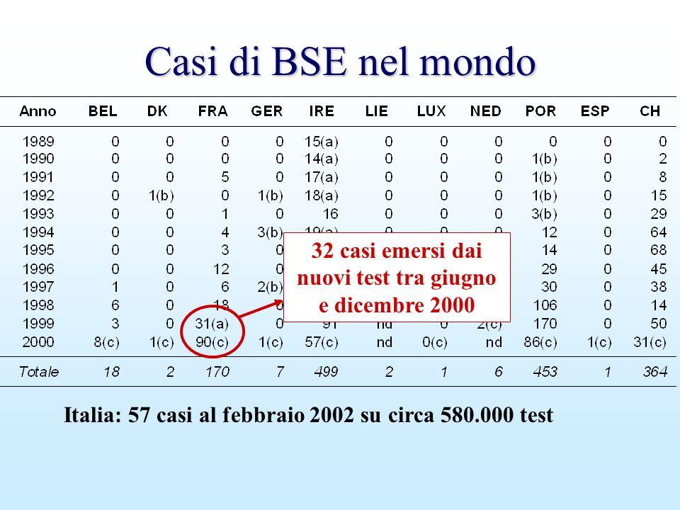 32 casi emersi dai nuovi test tra giugno e dicembre 2000