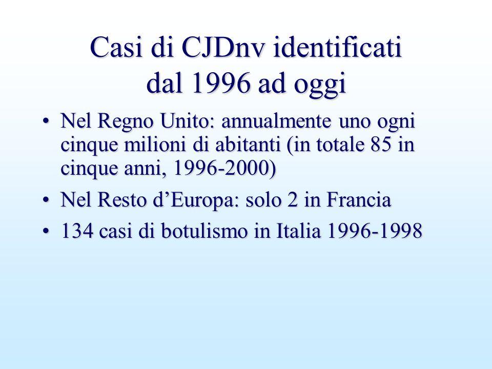 Casi di CJDnv identificati dal 1996 ad oggi