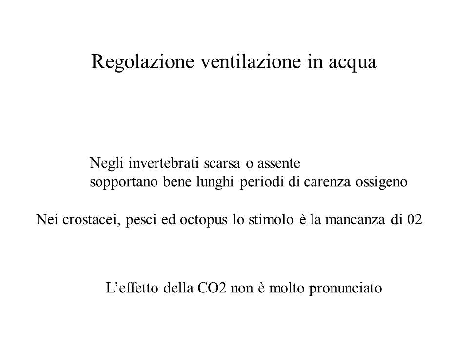 Regolazione ventilazione in acqua