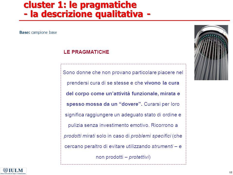 cluster 1: le pragmatiche - la descrizione qualitativa -