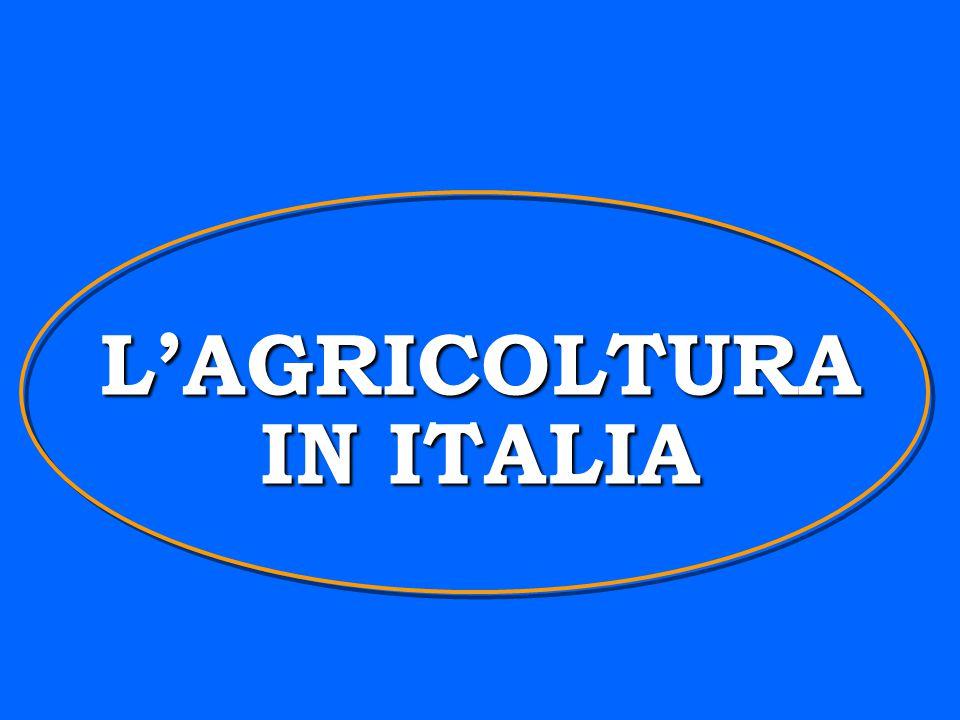 L'AGRICOLTURA IN ITALIA