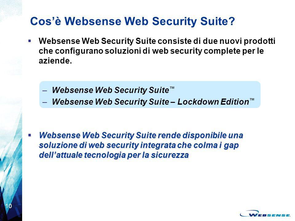 Cos'è Websense Web Security Suite