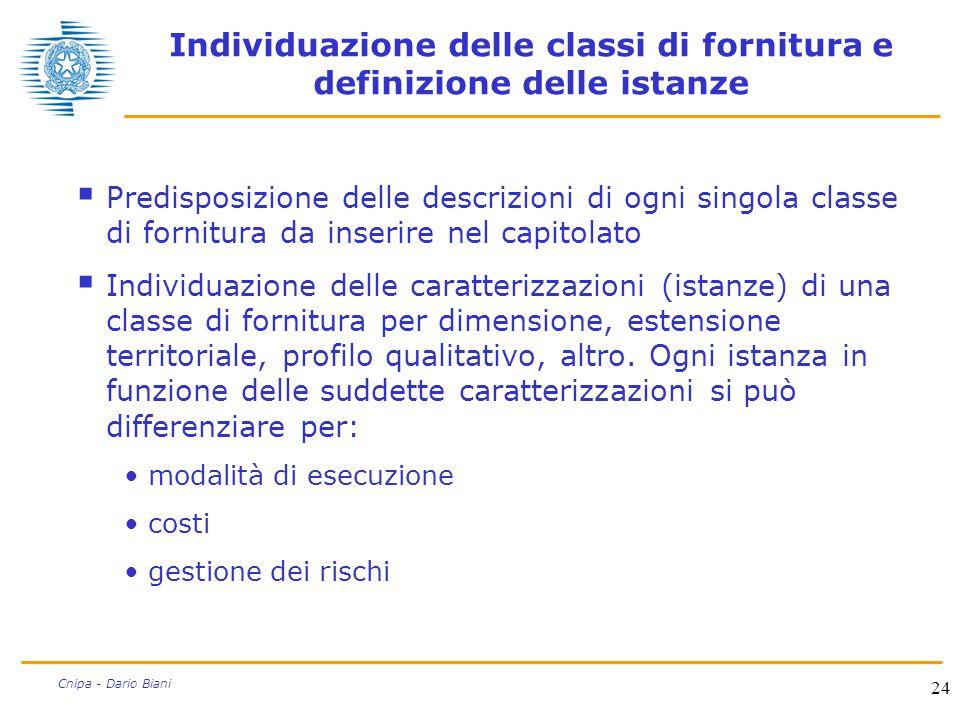 Individuazione delle classi di fornitura e definizione delle istanze