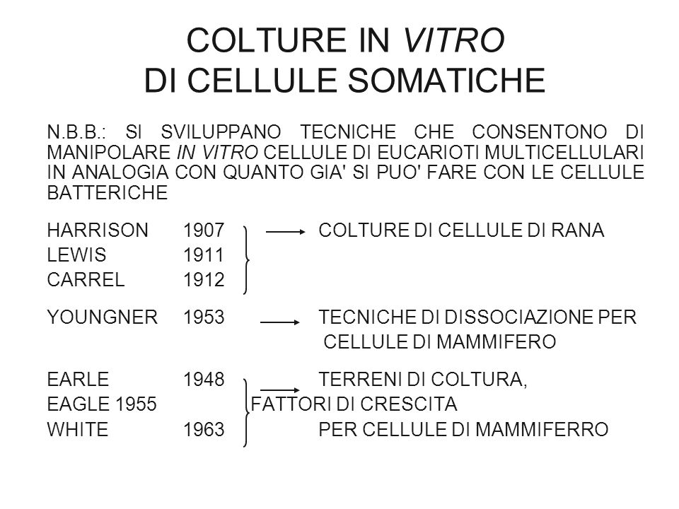COLTURE IN VITRO DI CELLULE SOMATICHE
