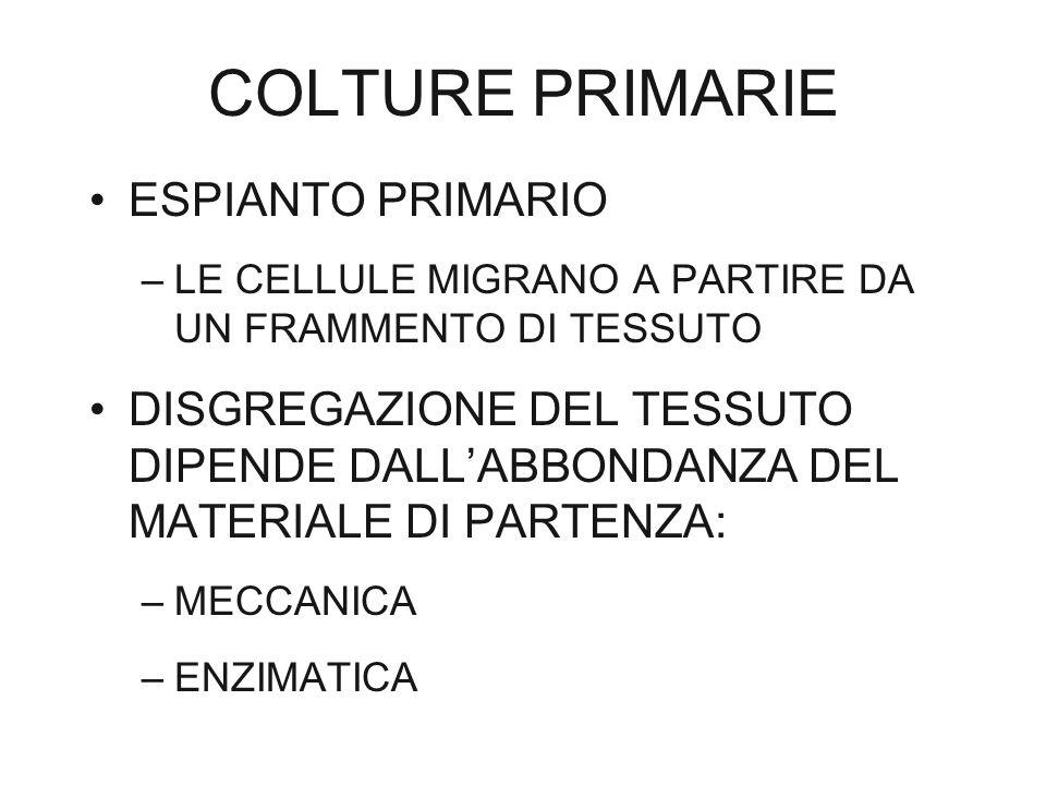 COLTURE PRIMARIE ESPIANTO PRIMARIO