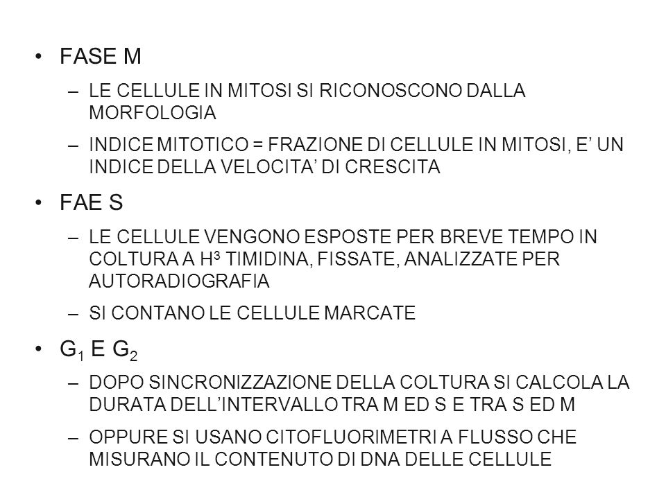 FASE M LE CELLULE IN MITOSI SI RICONOSCONO DALLA MORFOLOGIA.
