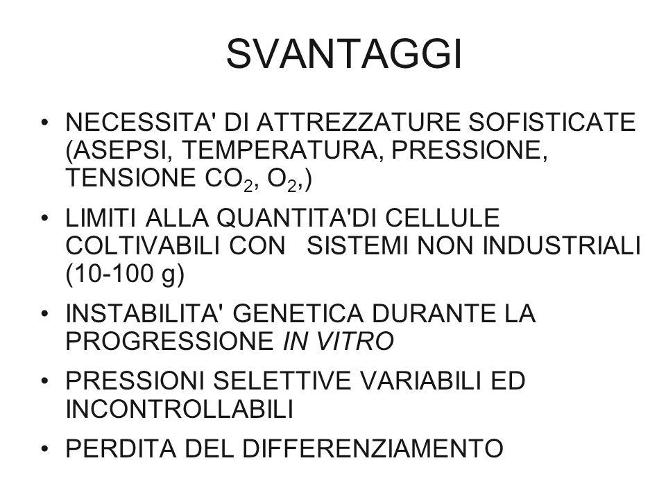SVANTAGGI NECESSITA DI ATTREZZATURE SOFISTICATE (ASEPSI, TEMPERATURA, PRESSIONE, TENSIONE CO2, O2,)