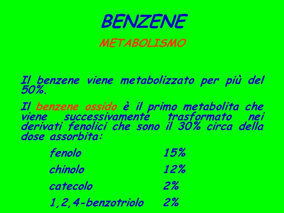 BENZENE METABOLISMO Il benzene viene metabolizzato per più del 50%.