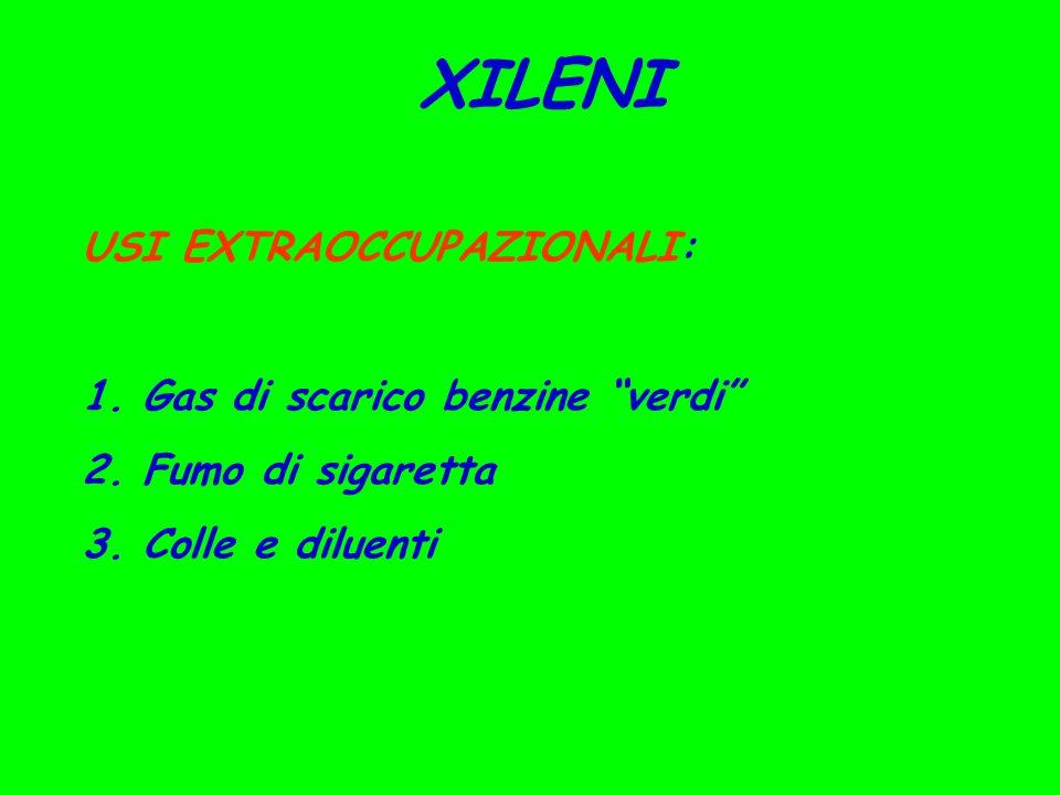 XILENI USI EXTRAOCCUPAZIONALI: 1. Gas di scarico benzine verdi