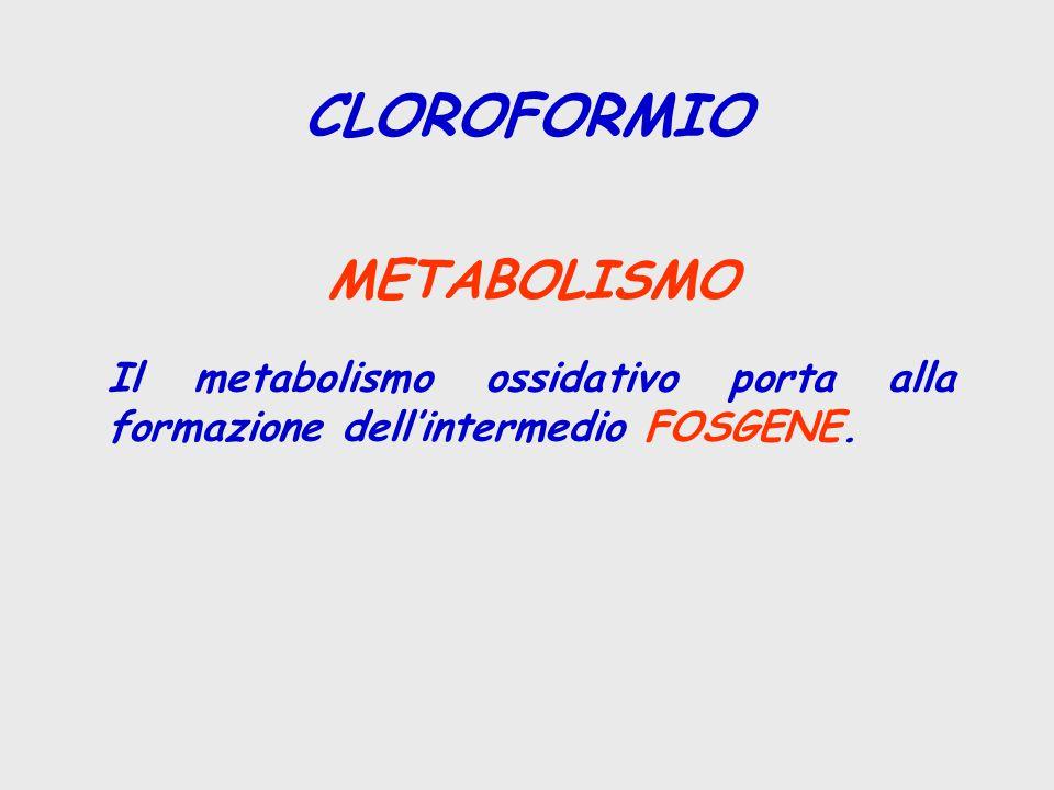 CLOROFORMIO METABOLISMO