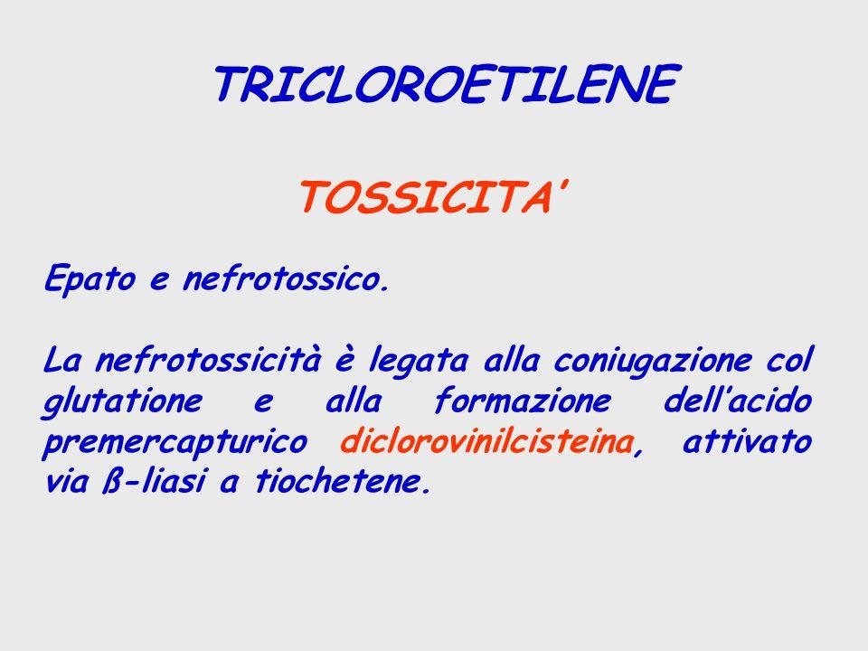 TRICLOROETILENE TOSSICITA' Epato e nefrotossico.