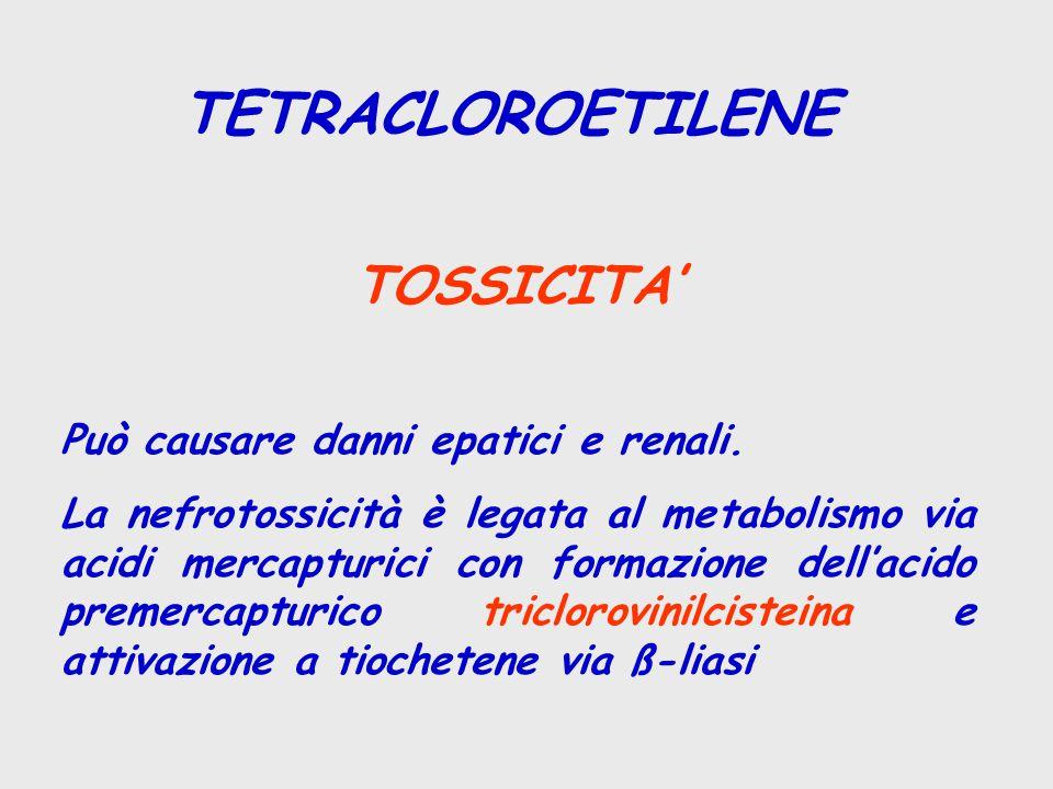 TETRACLOROETILENE TOSSICITA' Può causare danni epatici e renali.