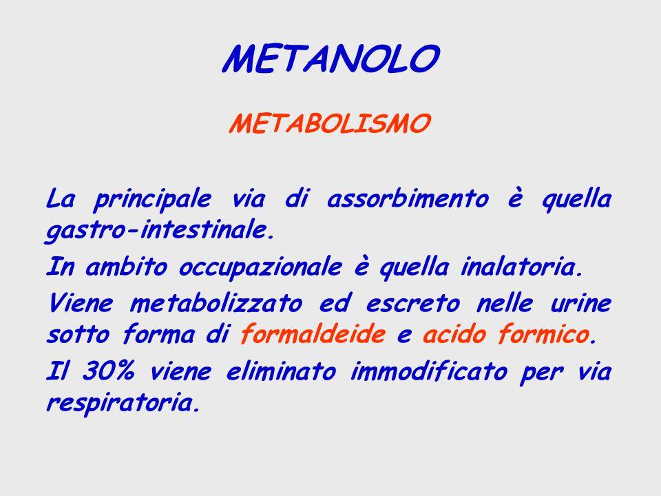 METANOLO METABOLISMO. La principale via di assorbimento è quella gastro-intestinale. In ambito occupazionale è quella inalatoria.