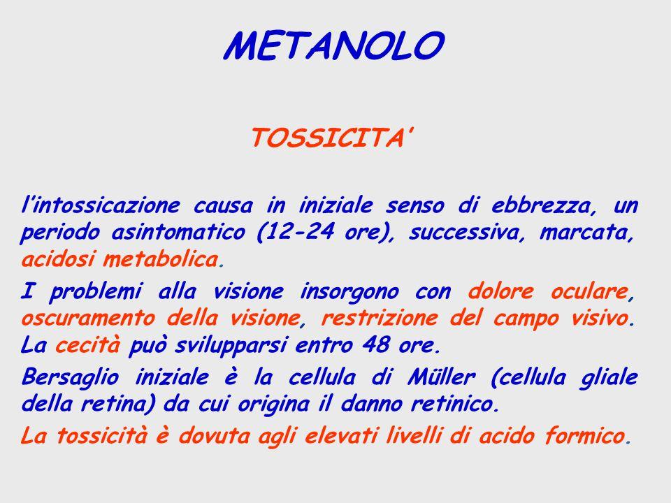 METANOLO TOSSICITA'