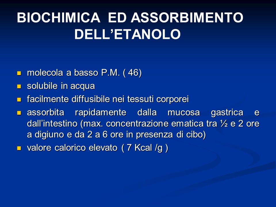 BIOCHIMICA ED ASSORBIMENTO DELL'ETANOLO