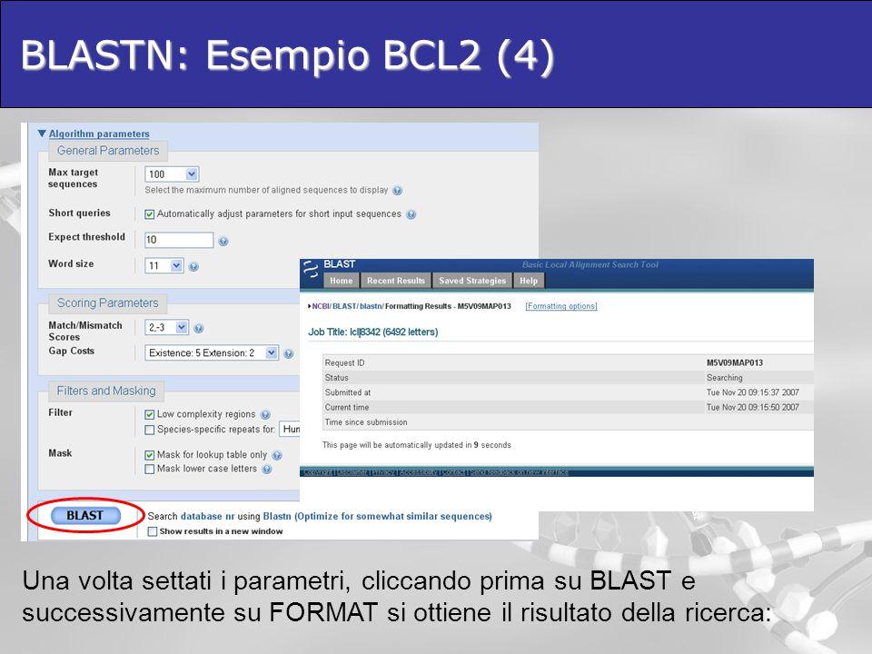 BLASTN: Esempio BCL2 (4)