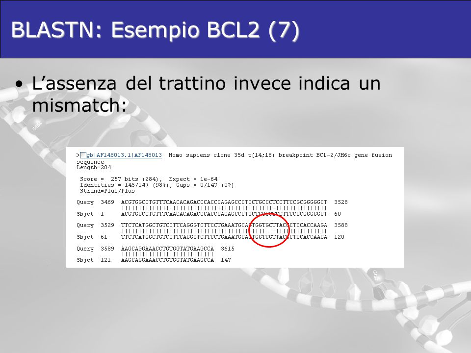 BLASTN: Esempio BCL2 (7)