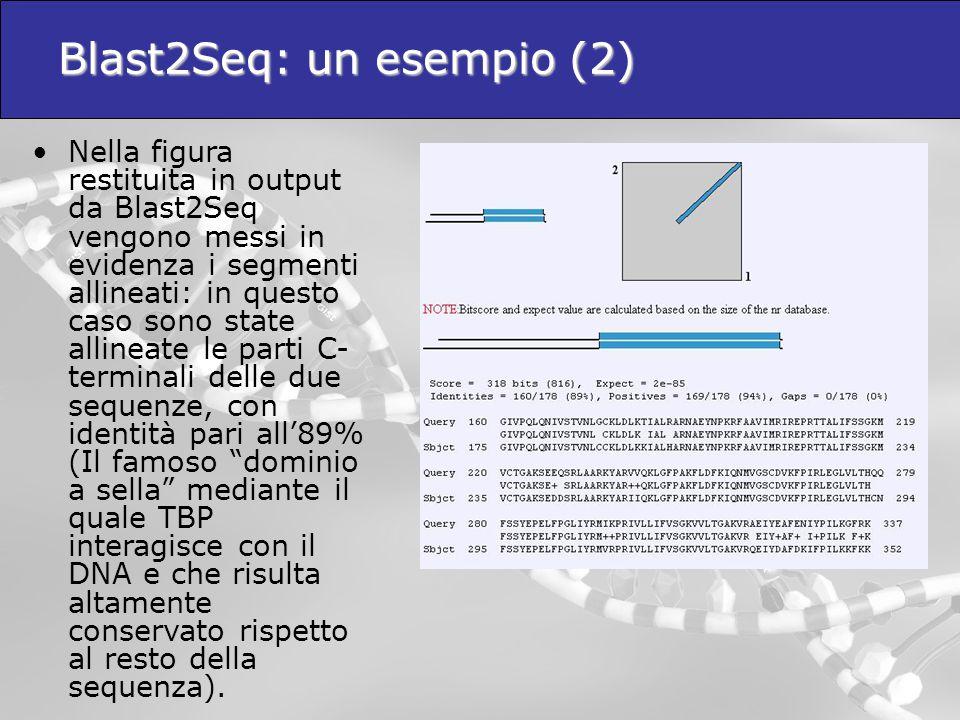 Blast2Seq: un esempio (2)