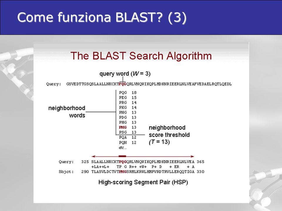Come funziona BLAST (3)