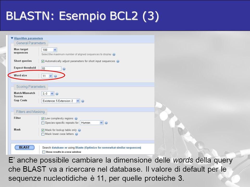 BLASTN: Esempio BCL2 (3)
