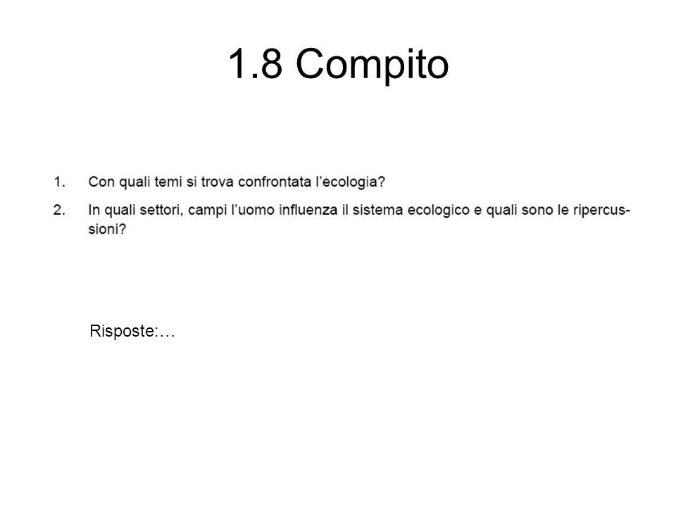 1.8 Compito Risposte:…
