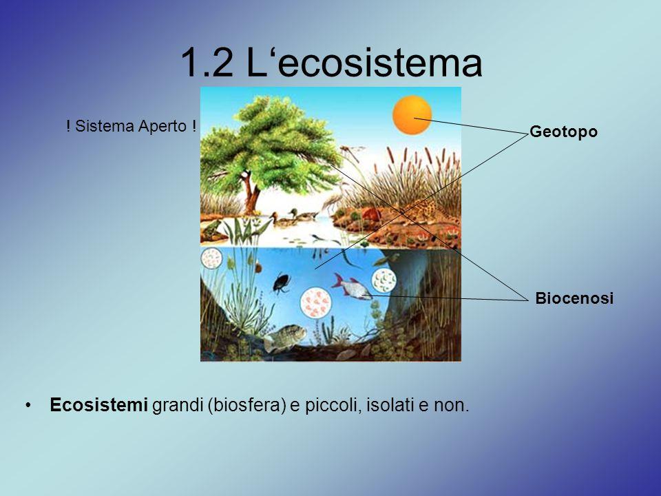 1.2 L'ecosistema . Sistema Aperto . Geotopo. Biocenosi.