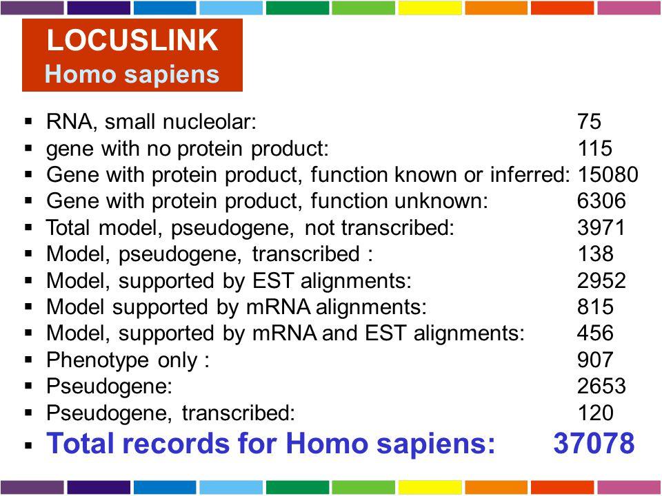 LOCUSLINK Homo sapiens RNA, small nucleolar: 75