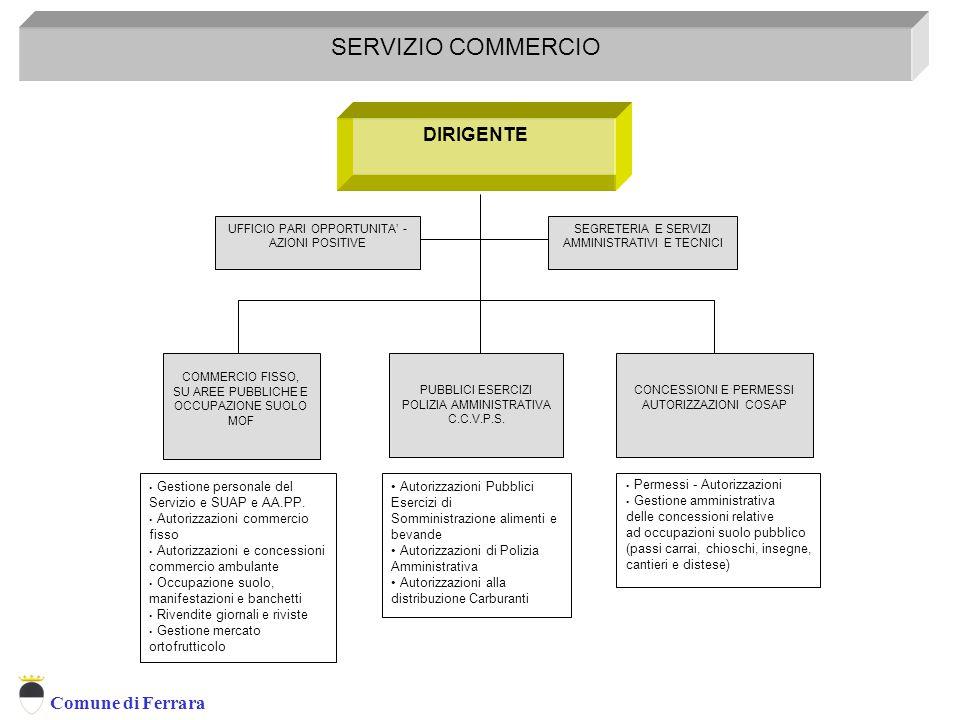 SERVIZIO COMMERCIO DIRIGENTE