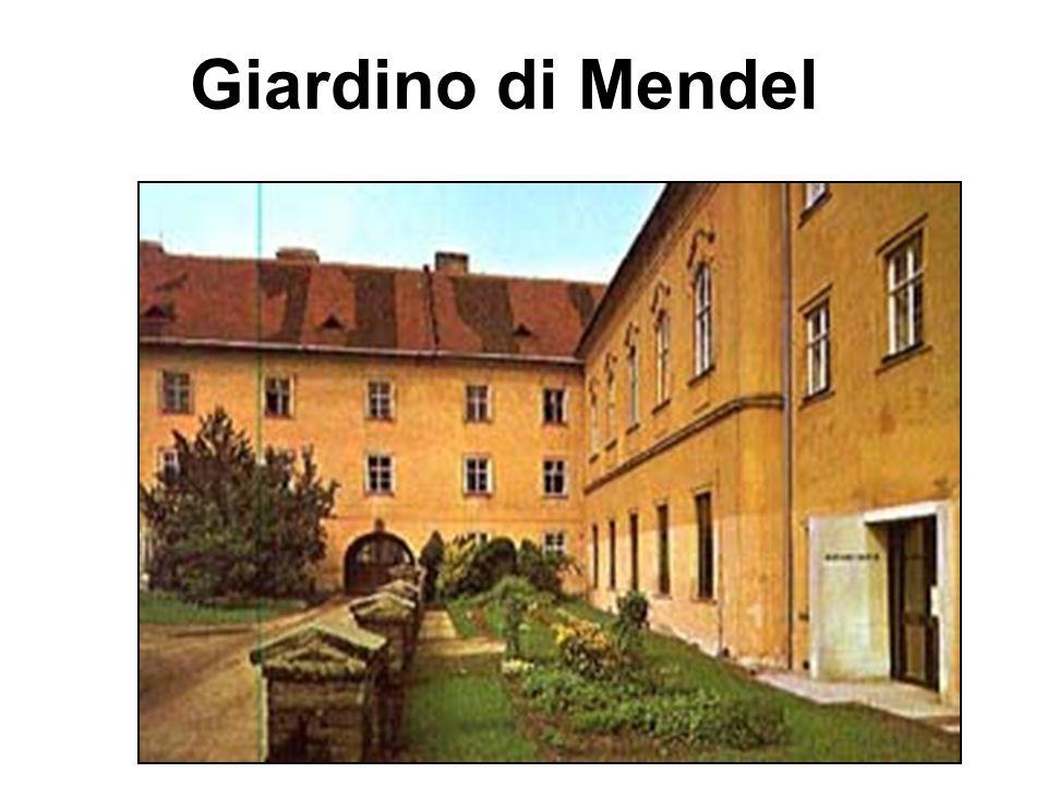 Giardino di Mendel