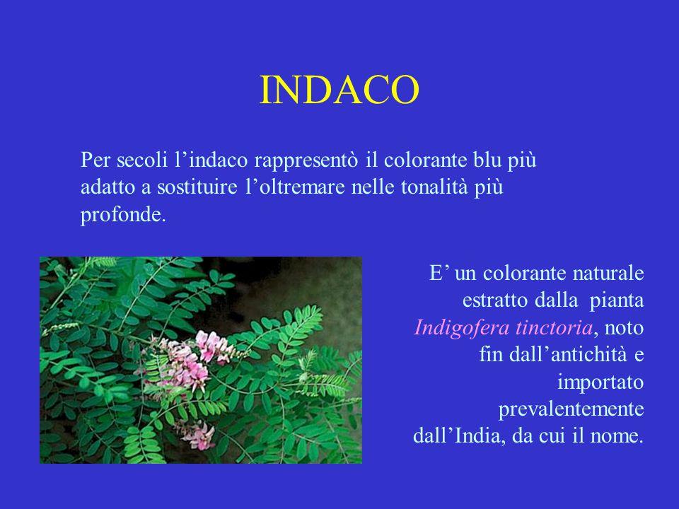 INDACO Per secoli l'indaco rappresentò il colorante blu più adatto a sostituire l'oltremare nelle tonalità più profonde.