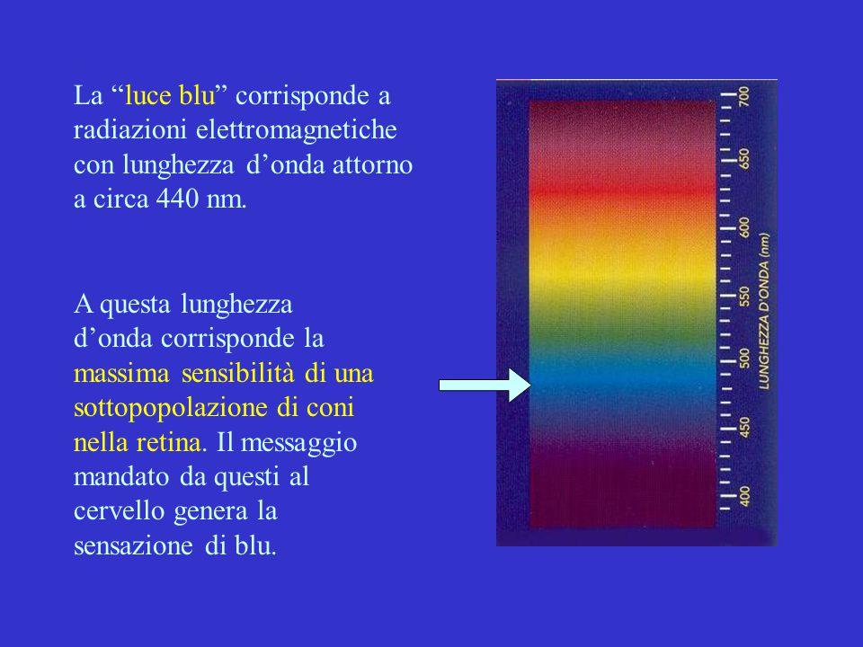 La luce blu corrisponde a radiazioni elettromagnetiche con lunghezza d'onda attorno a circa 440 nm.
