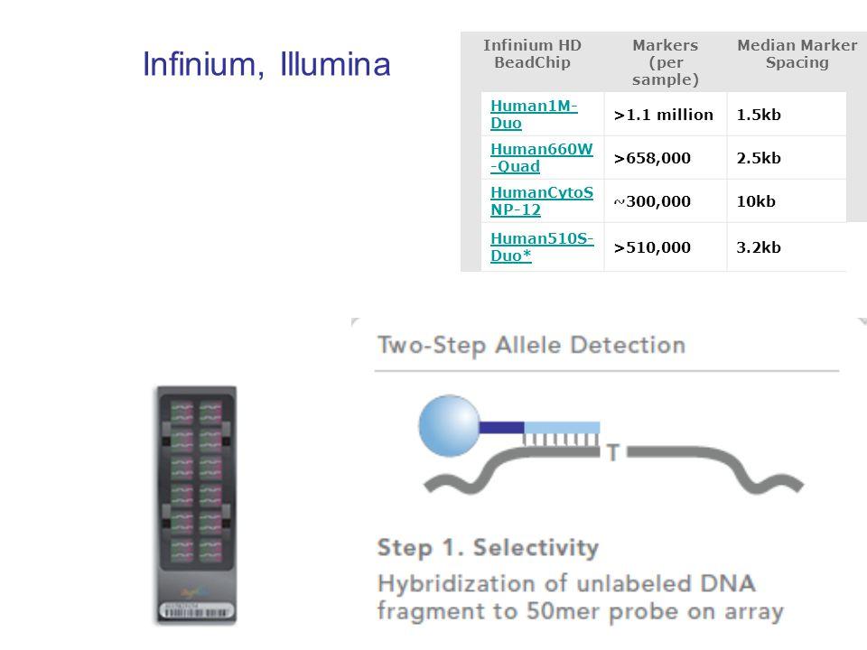 Infinium, Illumina Infinium HD BeadChip Markers (per sample)