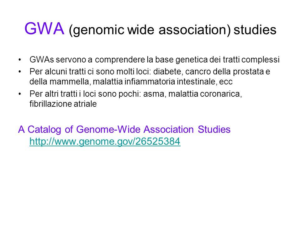 GWA (genomic wide association) studies