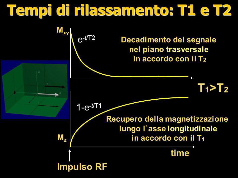 Tempi di rilassamento: T1 e T2