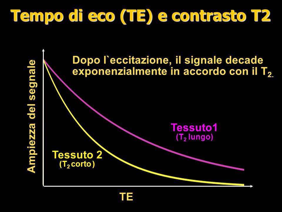Tempo di eco (TE) e contrasto T2