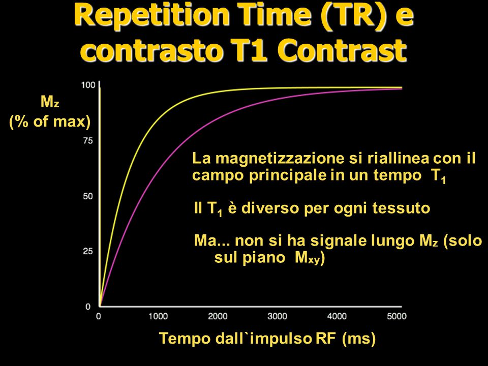 Repetition Time (TR) e contrasto T1 Contrast