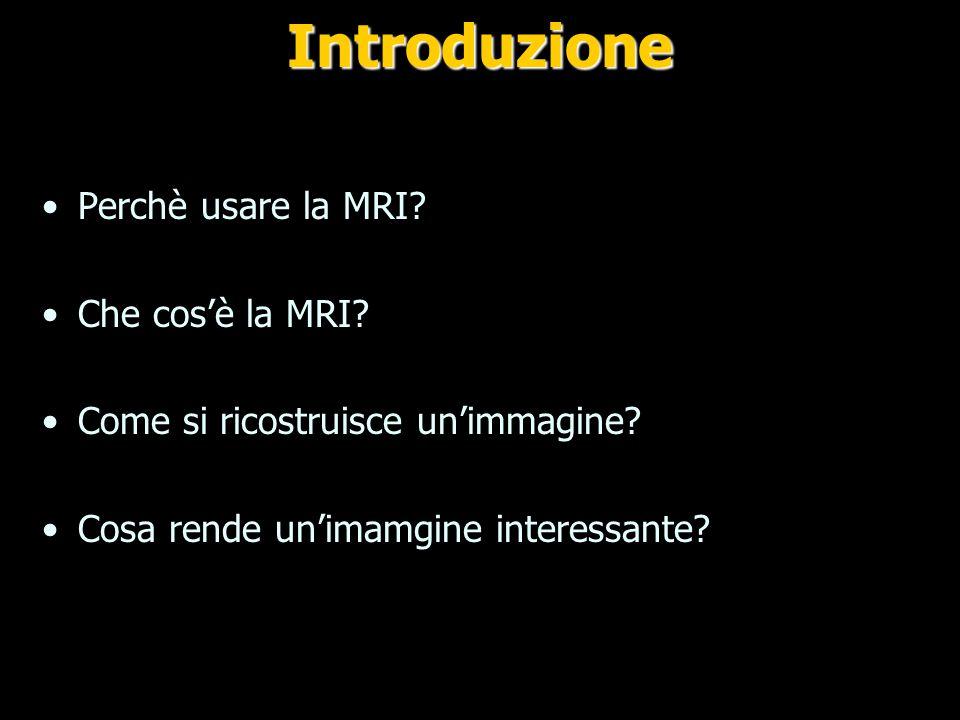 Introduzione Perchè usare la MRI Che cos'è la MRI