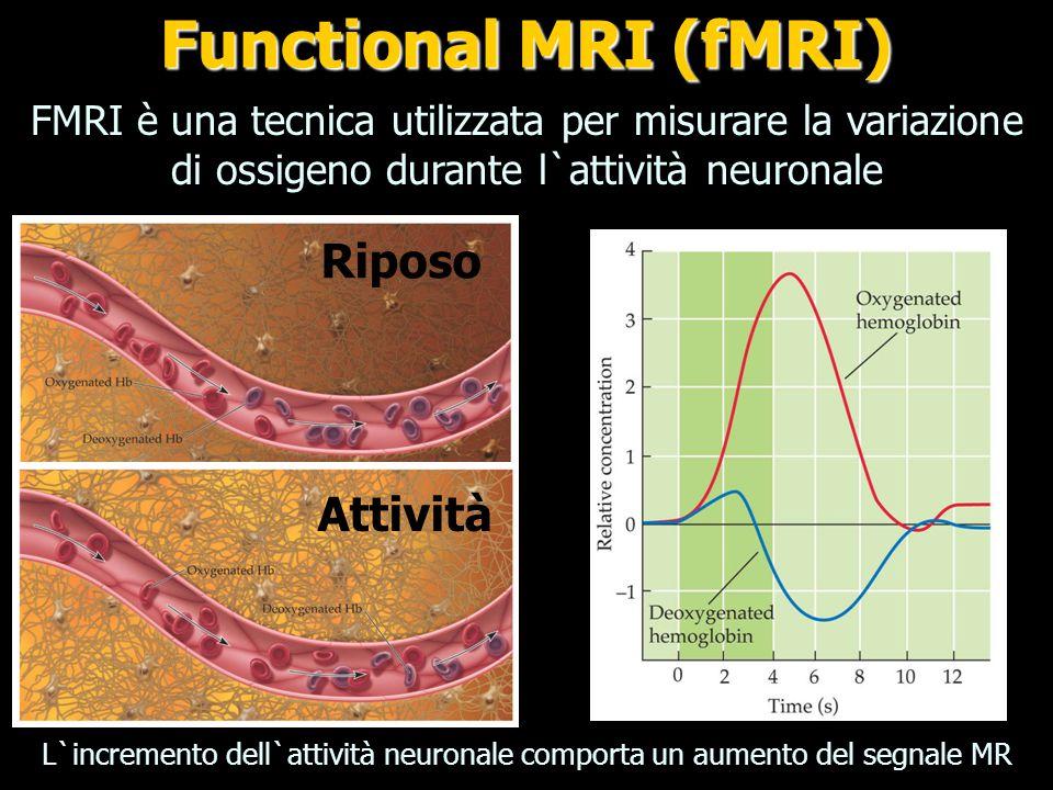 Functional MRI (fMRI) Riposo Attività