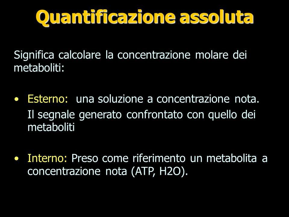 Quantificazione assoluta