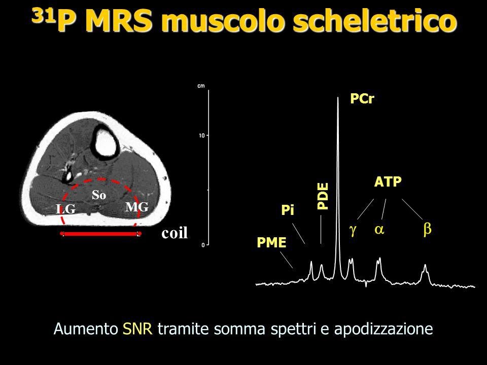 31P MRS muscolo scheletrico