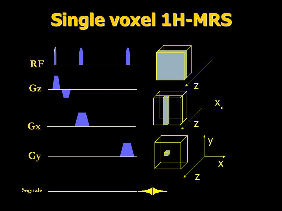 Single voxel 1H-MRS RF z Gz x z Gx y Gy x z Segnale
